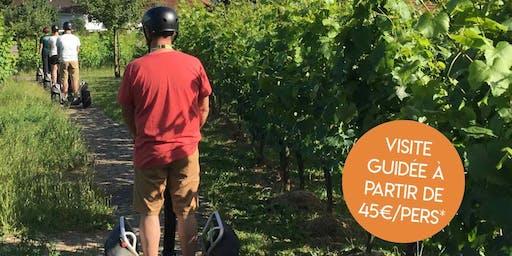 Entre vignes et patrimoine… en gyropode