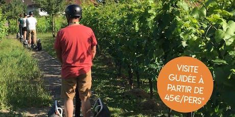 Entre vignes et patrimoine… en gyropode billets