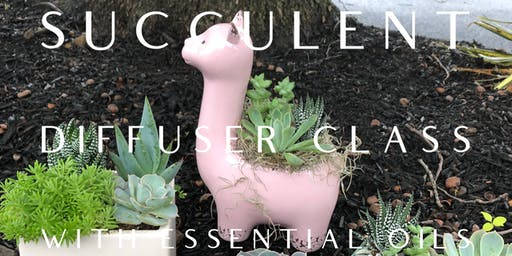 Succulent Diffuser Class with Essential Oils