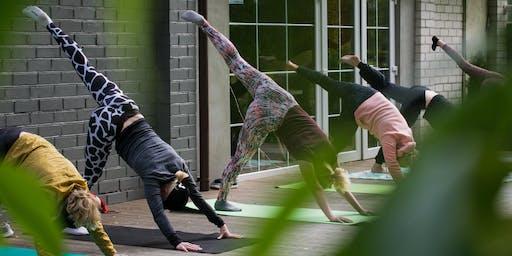 Yoga and Brunch at La Bodega