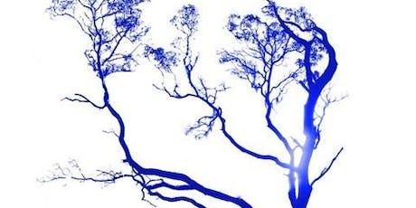 Blue Arbutus w/ Thorin Loeks and Shane Steward tickets