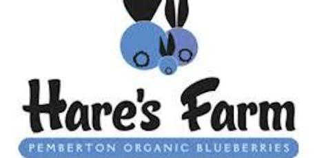 Hare's Farm Bulk Organic Blueberry Sale - 2019 tickets