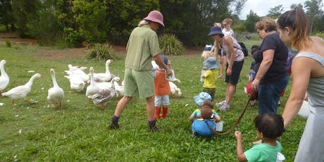Family Farm Tour at Purple Pear Farm tickets
