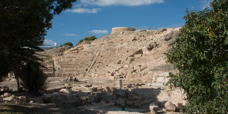 Paphos Theatre Archaeological Project Study Day tickets
