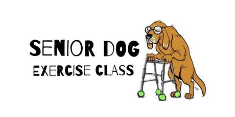 Stiff to Supple: Senior Dog Exercise Class! tickets
