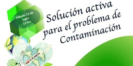 Ecología Activa entradas