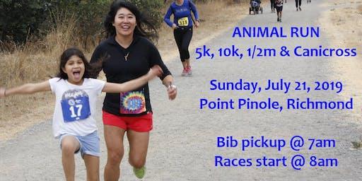 Animal Run 5k Bay Area charity race