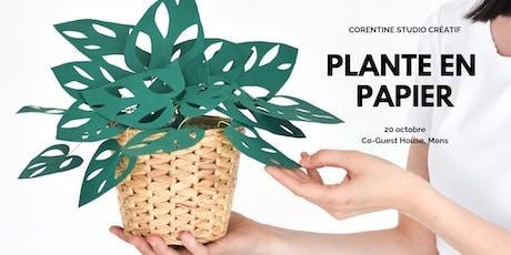 Atelier plante en papier billets