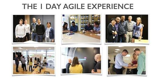 The 1 Day Agile Experience - Agile Fundamentals with Teamworx