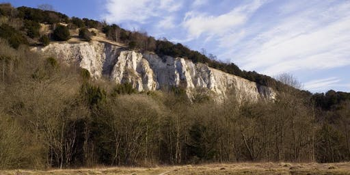 Written in Chalk: The History of Brockham Limeworks