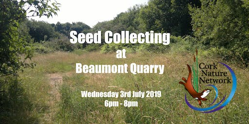 Seed Collecting - Beaumont Quarry