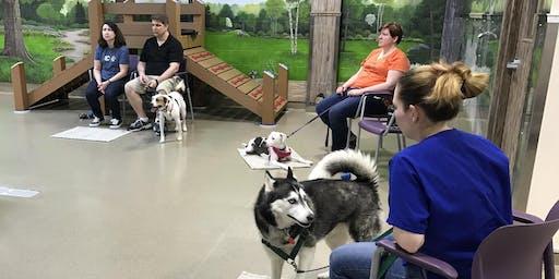 Come to Me - Dog Behavior Workshop