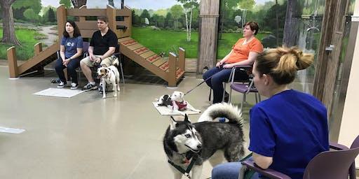 Polite House Manners - Dog Behavior Workshop