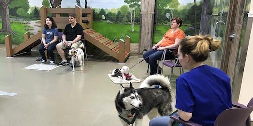 Tricks & Games - Dog Behavior Workshop