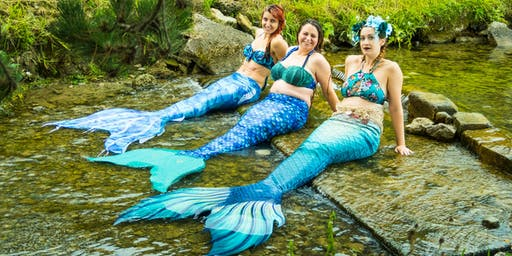 SEN-Only: Meet A 'Real Life Mermaid' at Weymouth SEA LIFE!