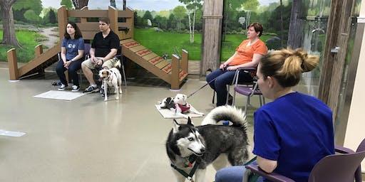 Settle & Stay - Dog Behavior Workshop