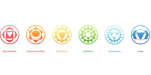 Certified Chakra Practitioner Training (IPHM Accredited)
