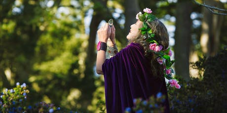 Journey to Illumination - An Evening with the Akashic Records tickets