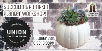 Pumpkin Succulent Centerpiece Workshop at Union Craft Brewing