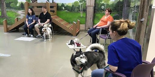 Walk With Me - Dog Behavior Workshop