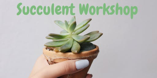 Flowers On Base Fort Carson: Succulent Workshop