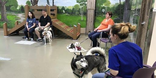 Orientation to Clicker Training - Dog Behavior Workshop