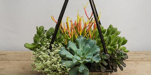 Succulent Pyramid Planter Workshop with Onita Castillo