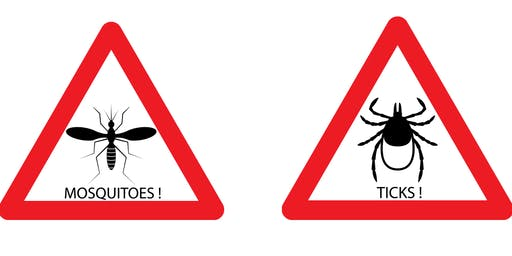 Bugs that Bite