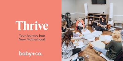 Thrive: Your Journey Into New Motherhood Class Series - Tuesdays 11/12 - 12/17 with Ashley Couse