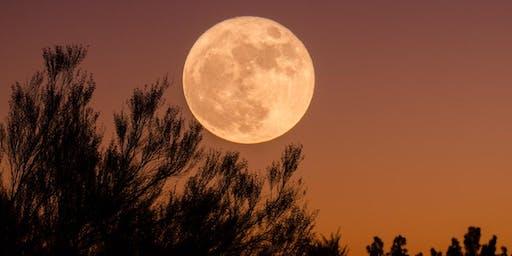Full Moon PULLKA: full body outdoor workout