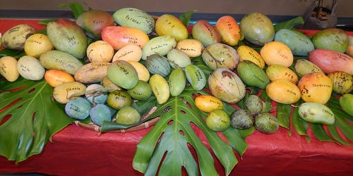 Mangos and Subtropical Fruit Trees for your Yard!