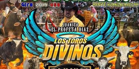 Los Toros Divinos En Calistoga tickets