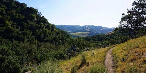 Temscal Canyon Trail Hike
