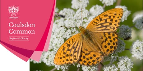 Butterfly walk - Coulsdon Common tickets