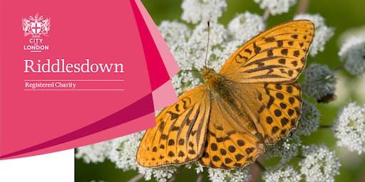 Butterfly walk - Riddlesdown