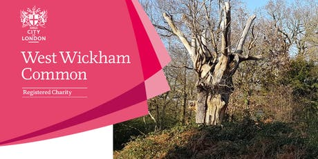 Art on the Common - West Wickham Common tickets