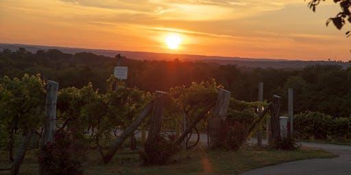 Vinoklet Winery Photo Walk Part Deux