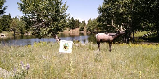 Elk Tips Archery 3D Shoot