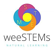 weeSTEMs logo
