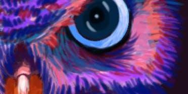 """Pour & Paint """"Owl"""""""