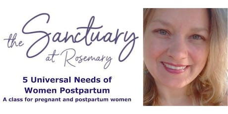 5 Universal Needs of Women Postpartum tickets