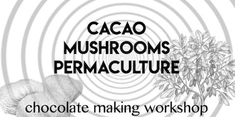 Cacao - Mushrooms - Permaculture tickets