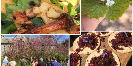 Wild wine and Foraging Day Out tickets