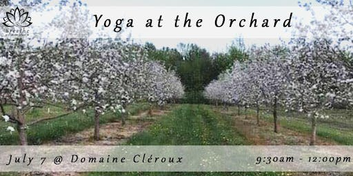 Yoga at the Orchard