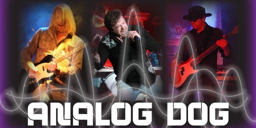 Lions Beer Garden @ Pan-O-Prog: Live Music with Analog Dog on Parade Night
