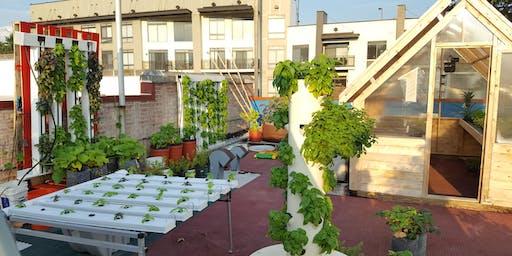 Rooftop Farm Tour