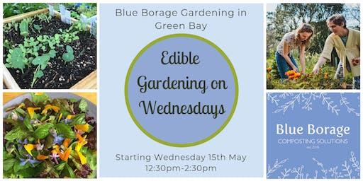 Term 3: Wednesday Edible Gardening (10 weeks)