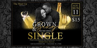 SINGLE PROFESSIONALS NETWORKING EVENT