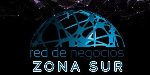 ZONA SUR Sinergia Empresarial  3° encuentro