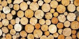 Wood Works - Children aged 6-12years
